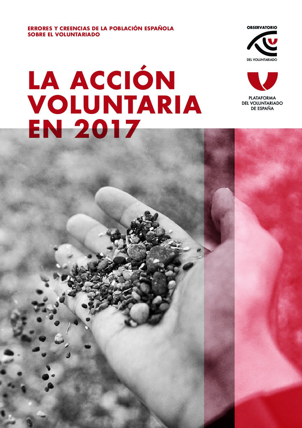 la-accion-voluntaria-en-2017