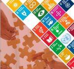Una guía de recursos acerca los ODS a las entidades de voluntariado